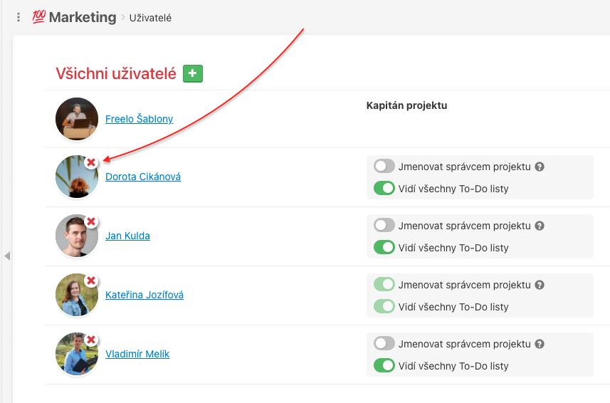 Jak odebrat uživatele z konkrétního projektu.