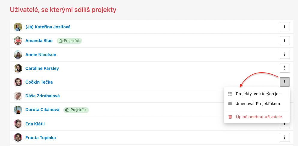Jak uživatele odebrat z několika projektů najednou.
