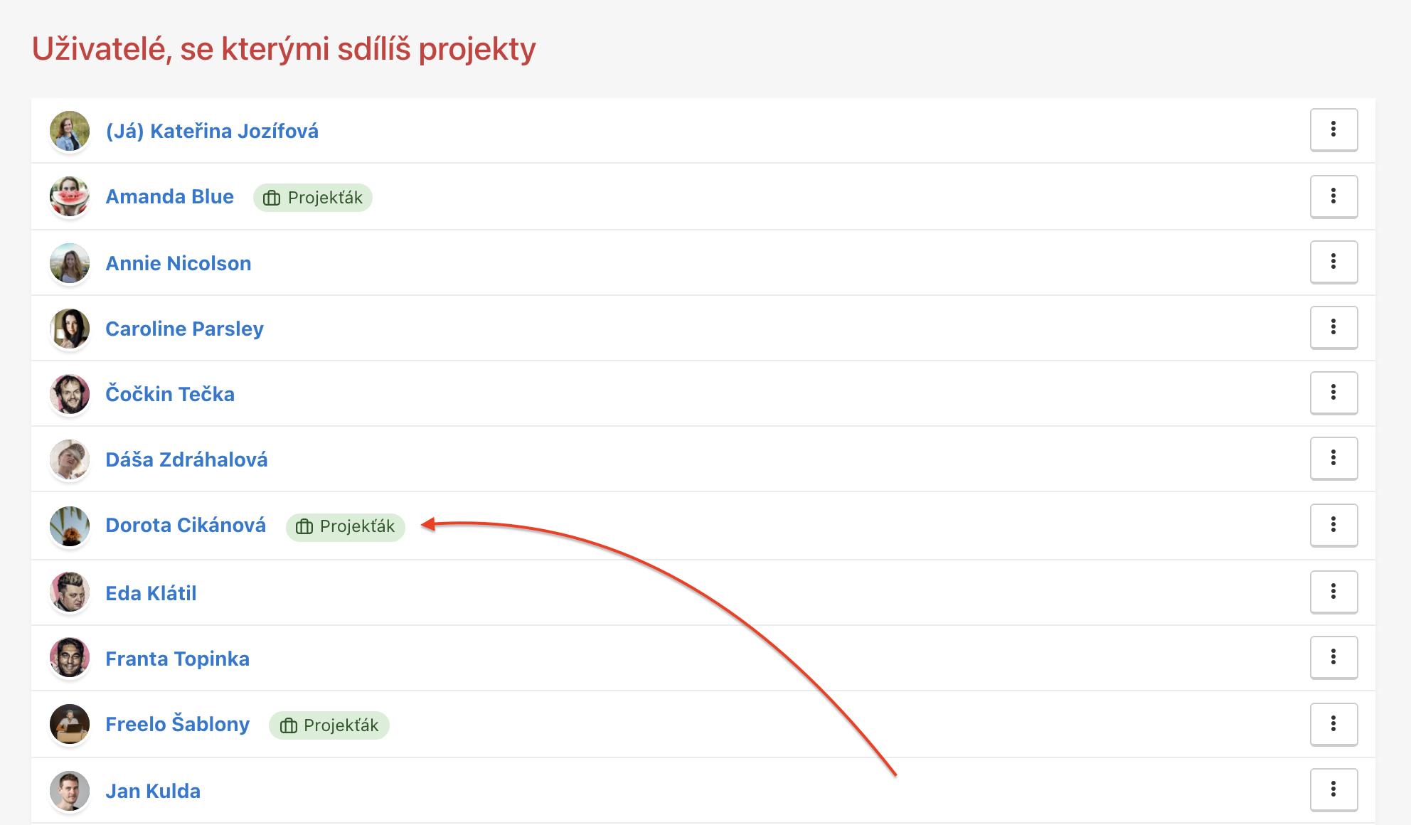 Přehled uživatelů, se kterými sdílíš projekty. Někteří z nich mají nastavenou roli Projekťáka.