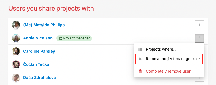 How to remove Project manager role.